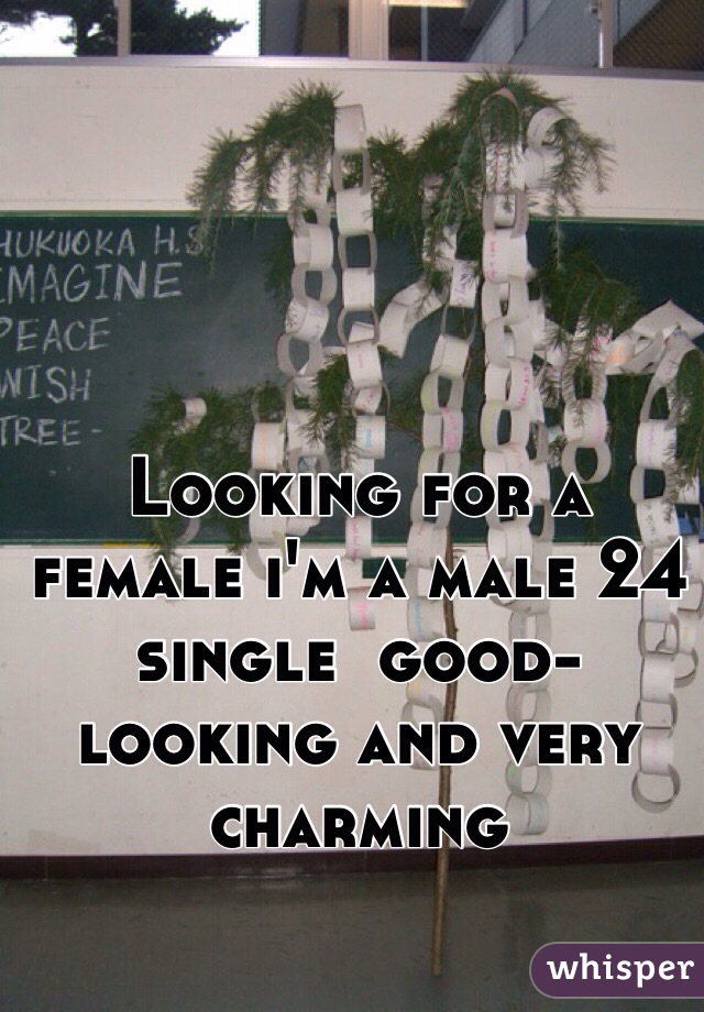 Looking for a female i'm a male 24 single  good-looking and very charming