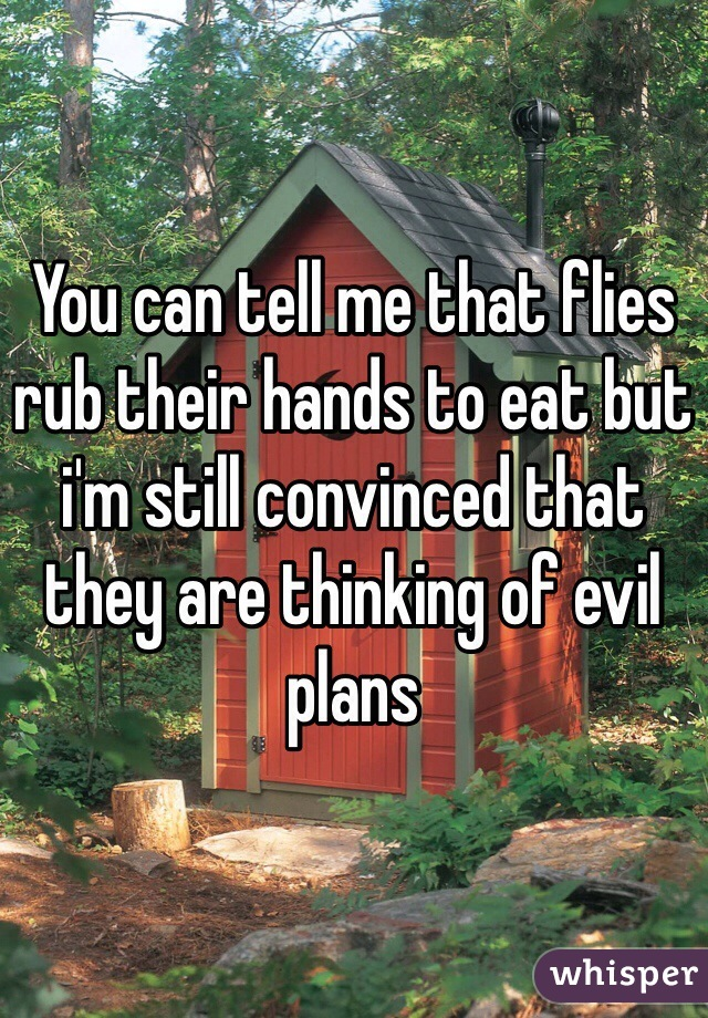 You can tell me that flies rub their hands to eat but i'm still convinced that they are thinking of evil plans