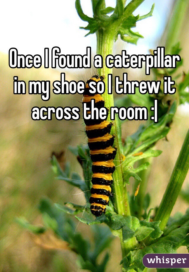 Once I found a caterpillar in my shoe so I threw it across the room :|