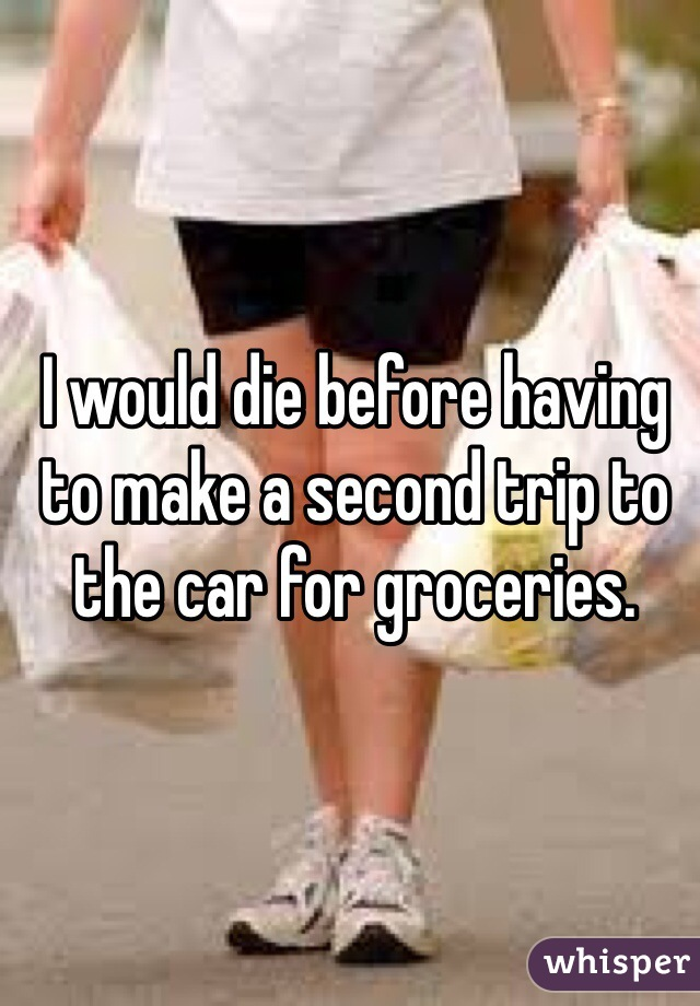 I would die before having to make a second trip to the car for groceries.