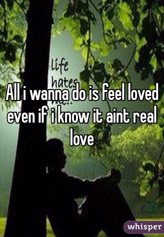 All i wanna do is feel loved even if i know it aint real love