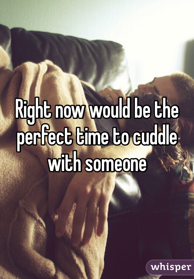 Right now would be the perfect time to cuddle with someone