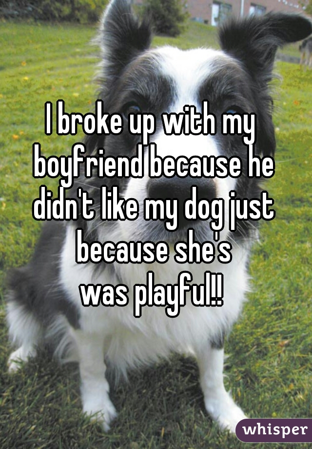 I broke up with my boyfriend because he didn't like my dog just because she's  was playful!!