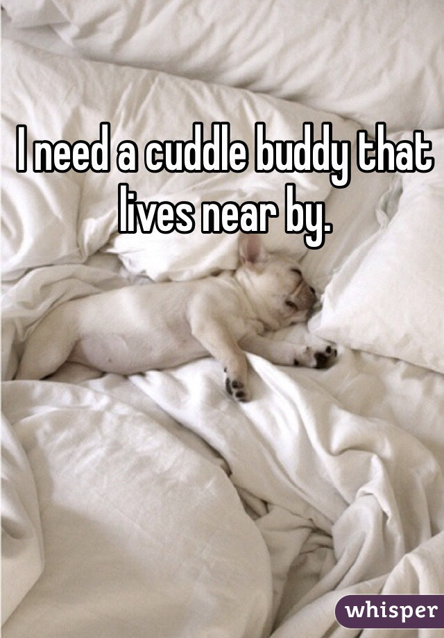 I need a cuddle buddy that lives near by.