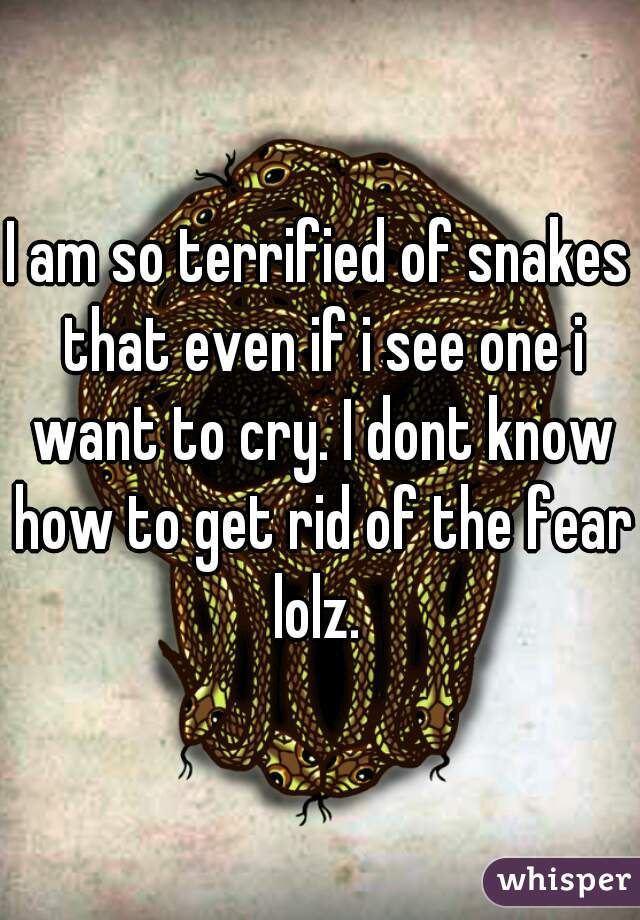 I am so terrified of snakes that even if i see one i want to cry. I dont know how to get rid of the fear lolz.
