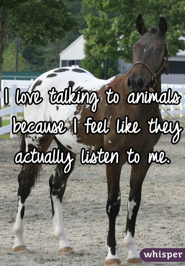 I love talking to animals because I feel like they actually listen to me.