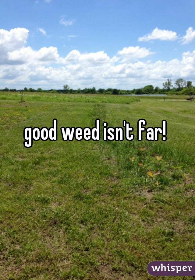 good weed isn't far!