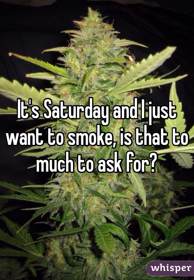 It's Saturday and I just want to smoke, is that to much to ask for?