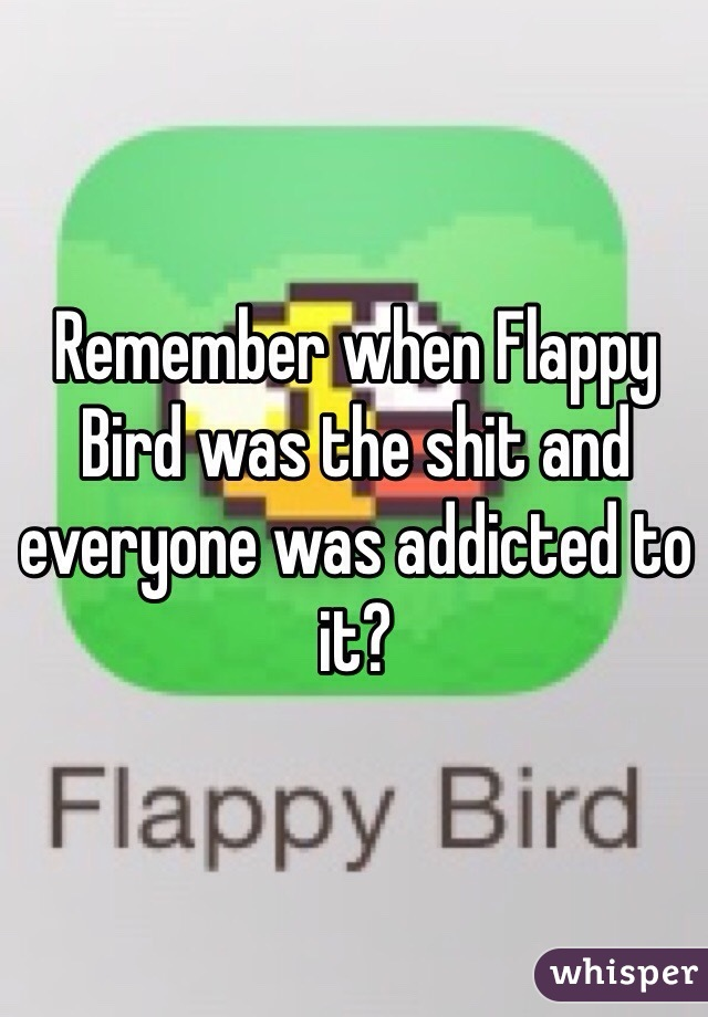 Remember when Flappy Bird was the shit and everyone was addicted to it?