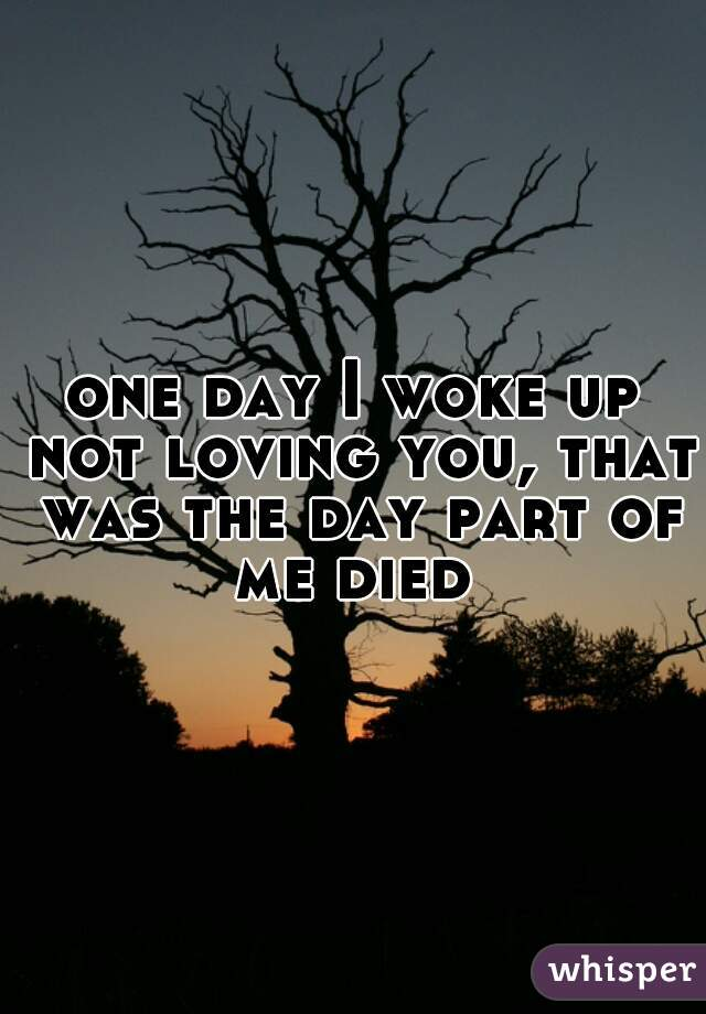 one day I woke up not loving you, that was the day part of me died