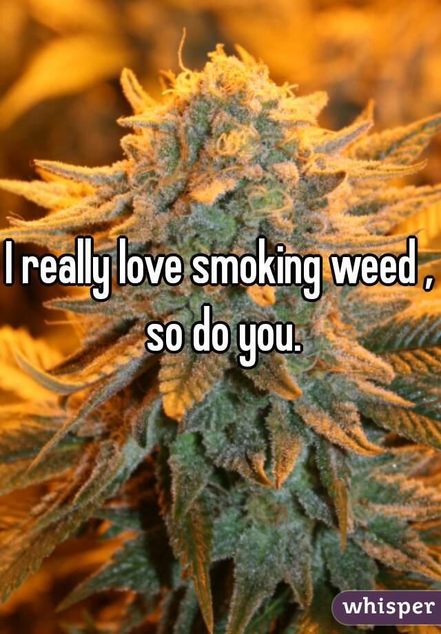 I really love smoking weed , so do you.