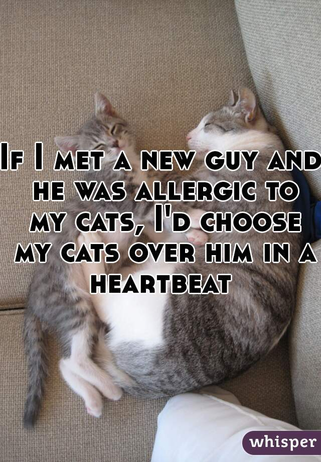 If I met a new guy and he was allergic to my cats, I'd choose my cats over him in a heartbeat