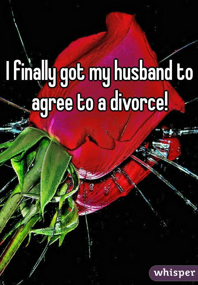 I finally got my husband to agree to a divorce!