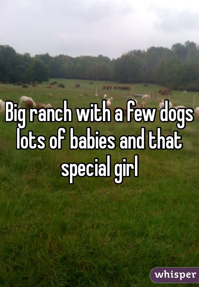 Big ranch with a few dogs lots of babies and that special girl