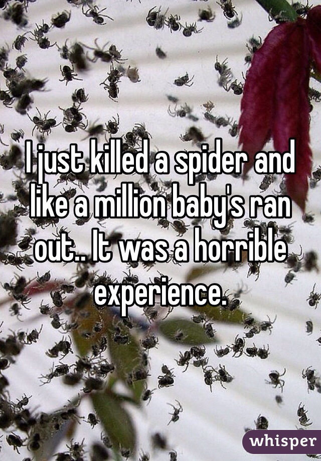 I just killed a spider and like a million baby's ran out.. It was a horrible experience.