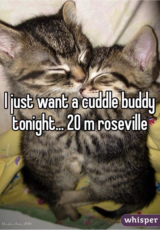 I just want a cuddle buddy tonight... 20 m roseville