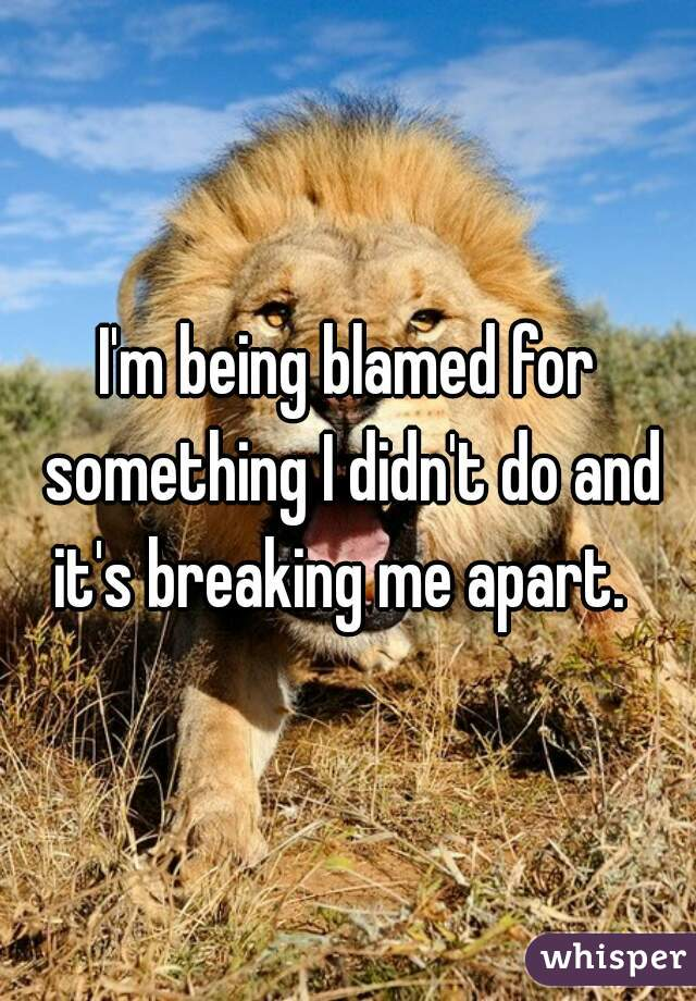 I'm being blamed for something I didn't do and it's breaking me apart.