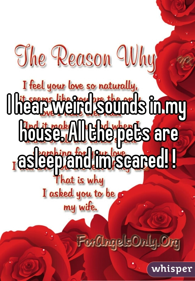 I hear weird sounds in my house. All the pets are asleep and im scared! !