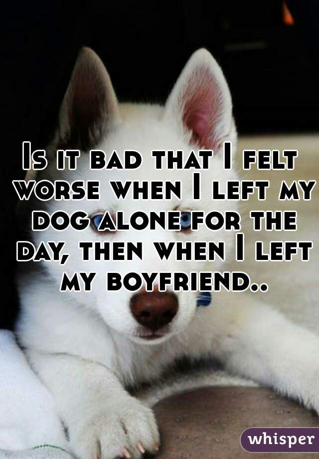 Is it bad that I felt worse when I left my dog alone for the day, then when I left my boyfriend..