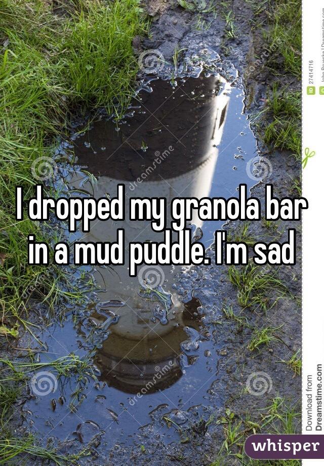 I dropped my granola bar in a mud puddle. I'm sad