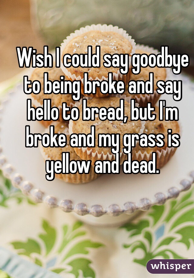 Wish I could say goodbye to being broke and say hello to bread, but I'm broke and my grass is yellow and dead.