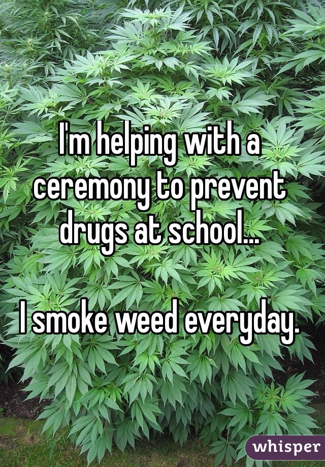 I'm helping with a ceremony to prevent drugs at school...  I smoke weed everyday.