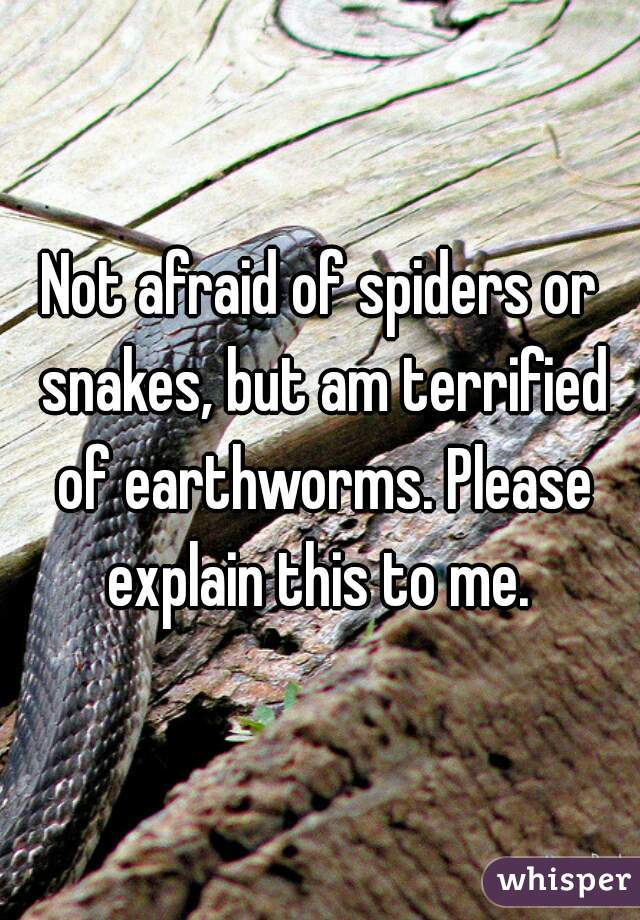 Not afraid of spiders or snakes, but am terrified of earthworms. Please explain this to me.