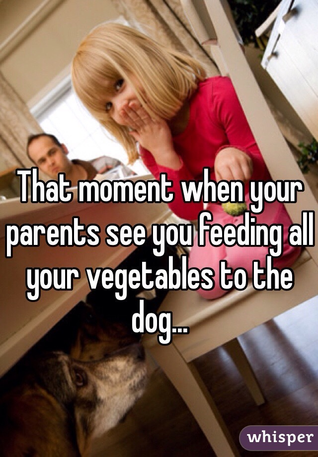 That moment when your parents see you feeding all your vegetables to the dog...