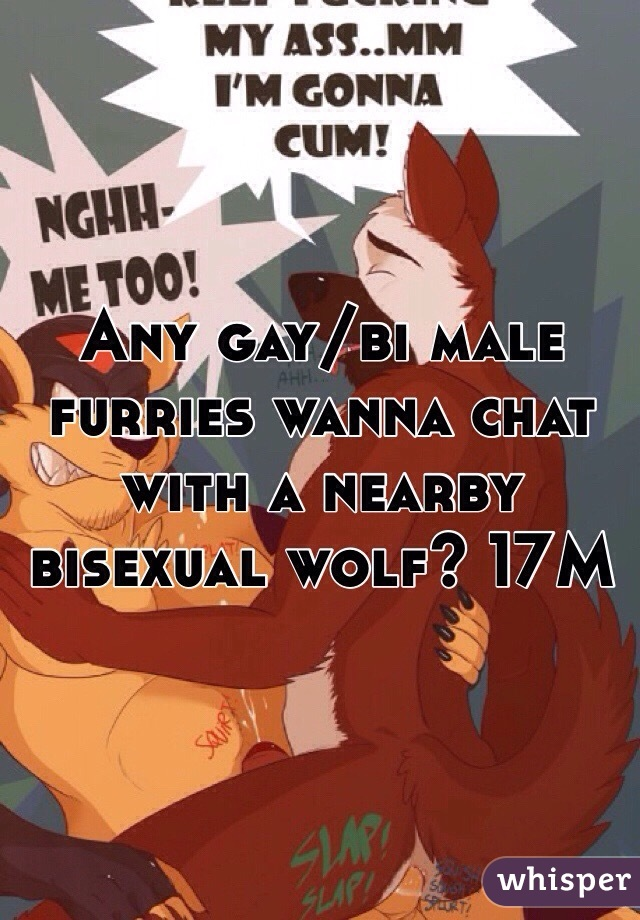 Any gay/bi male furries wanna chat with a nearby bisexual wolf? 17M