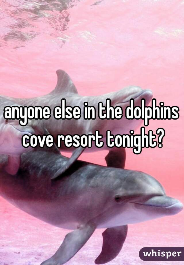 anyone else in the dolphins cove resort tonight?