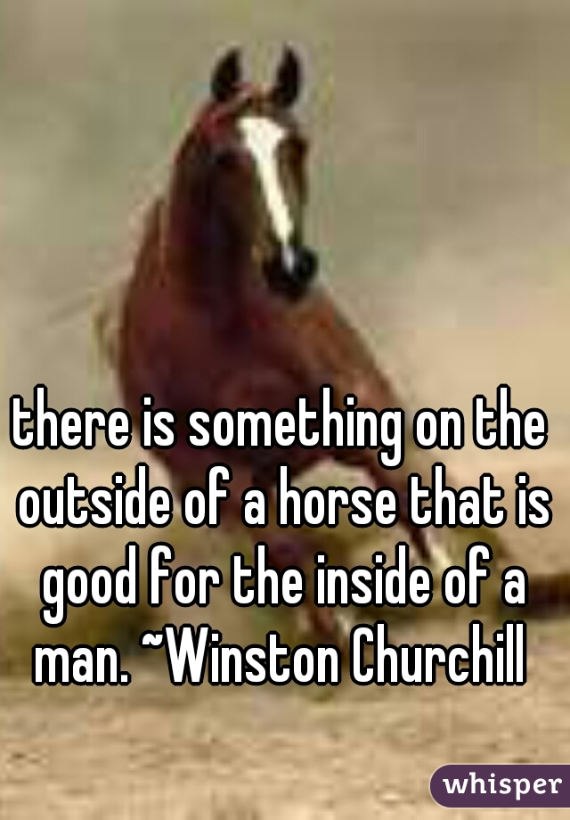 there is something on the outside of a horse that is good for the inside of a man. ~Winston Churchill