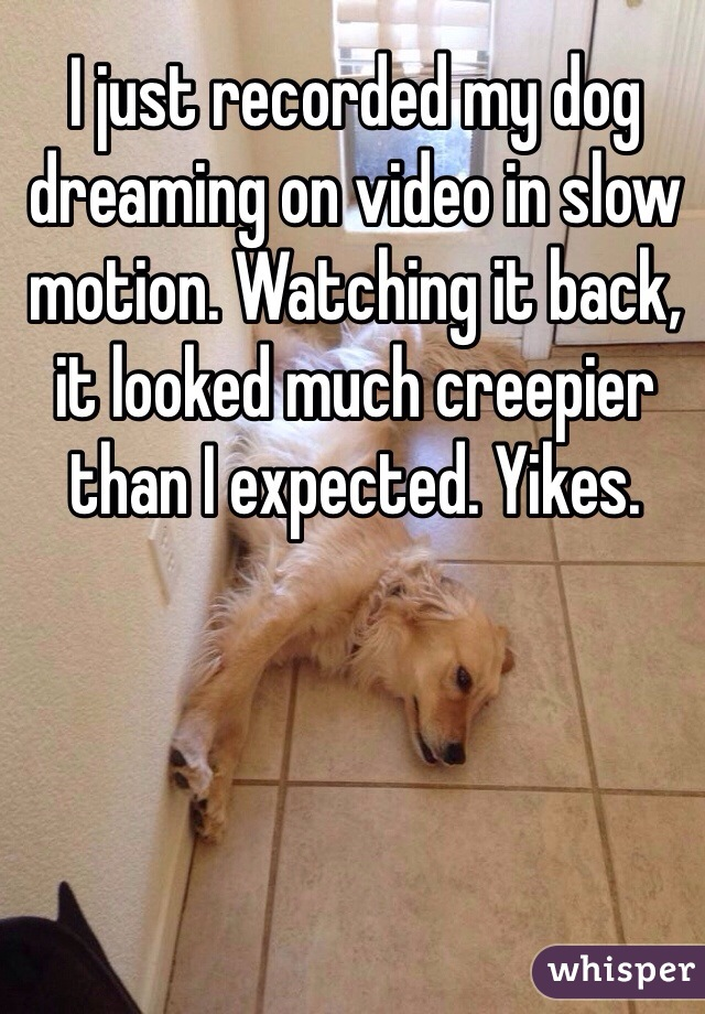 I just recorded my dog dreaming on video in slow motion. Watching it back, it looked much creepier than I expected. Yikes.