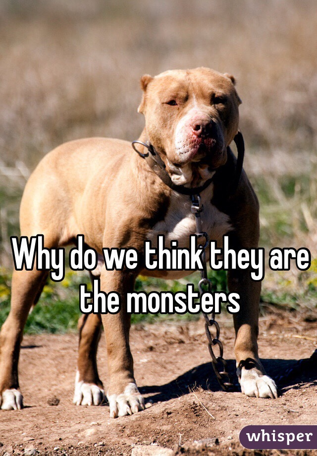 Why do we think they are the monsters