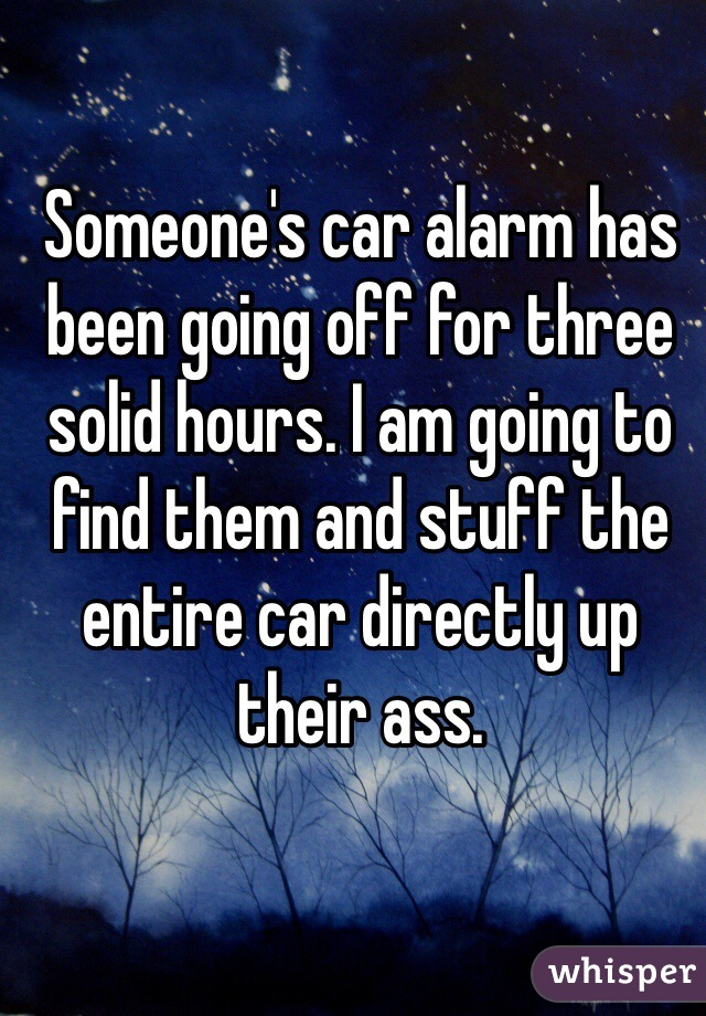 Someone's car alarm has been going off for three solid hours. I am going to find them and stuff the entire car directly up their ass.