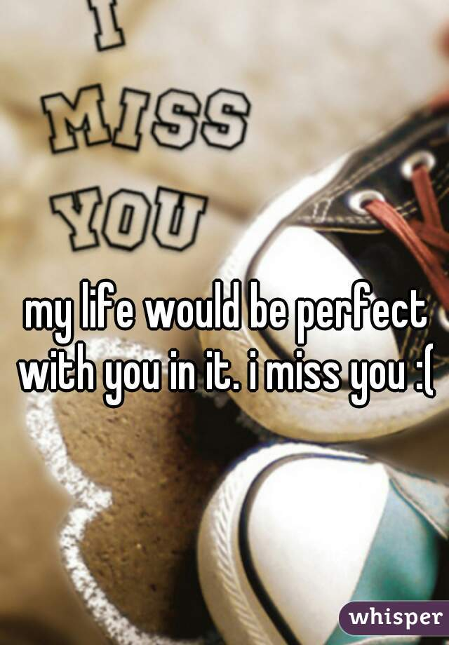 my life would be perfect with you in it. i miss you :(