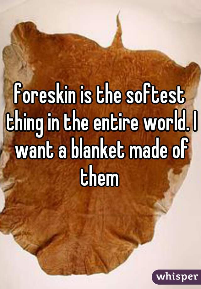 foreskin is the softest thing in the entire world. I want a blanket made of them