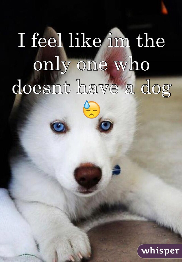 I feel like im the only one who doesnt have a dog 😓