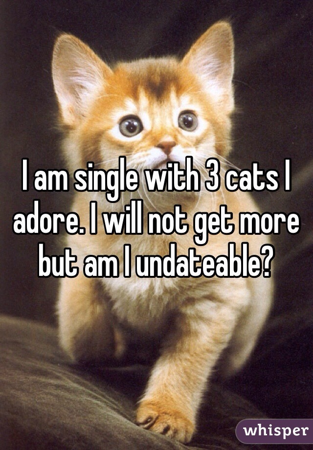 I am single with 3 cats I adore. I will not get more but am I undateable?