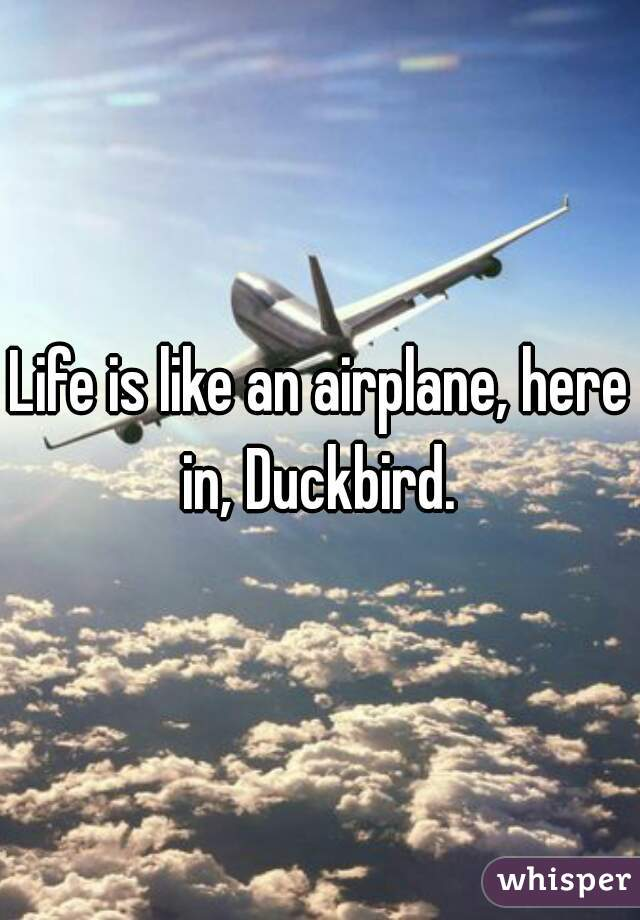 Life is like an airplane, here in, Duckbird.