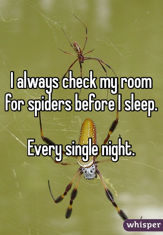 I always check my room for spiders before I sleep.   Every single night.