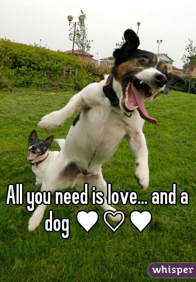 All you need is love... and a dog ♥♡♥