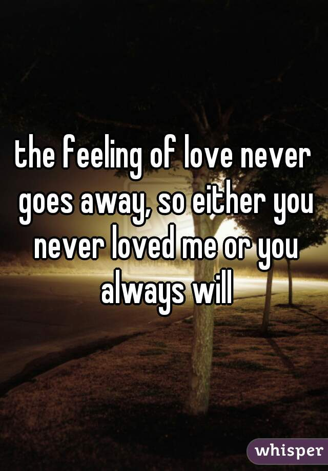 the feeling of love never goes away, so either you never loved me or you always will