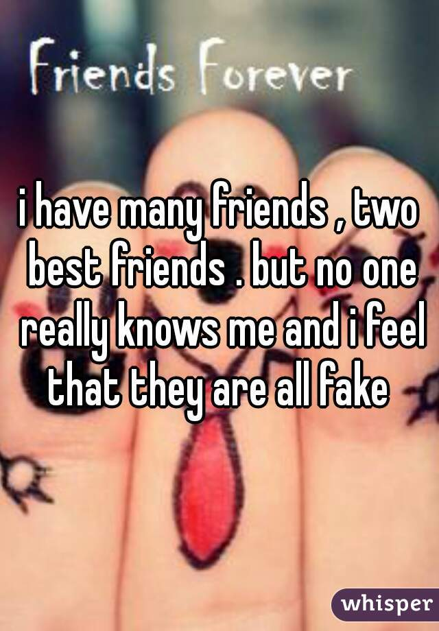 i have many friends , two best friends . but no one really knows me and i feel that they are all fake