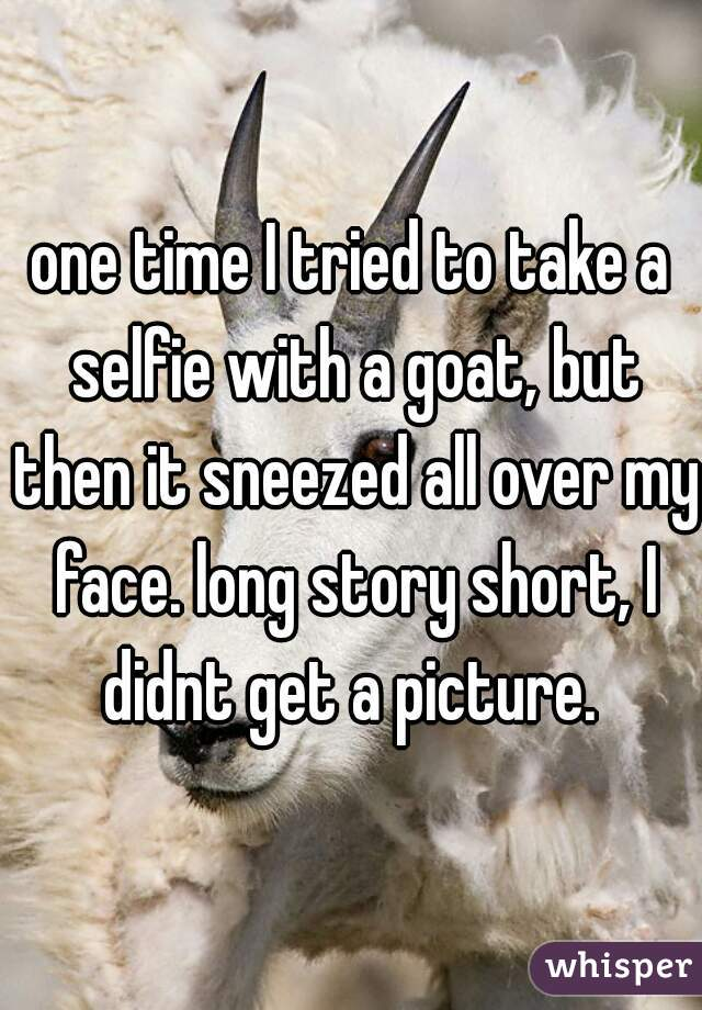one time I tried to take a selfie with a goat, but then it sneezed all over my face. long story short, I didnt get a picture.