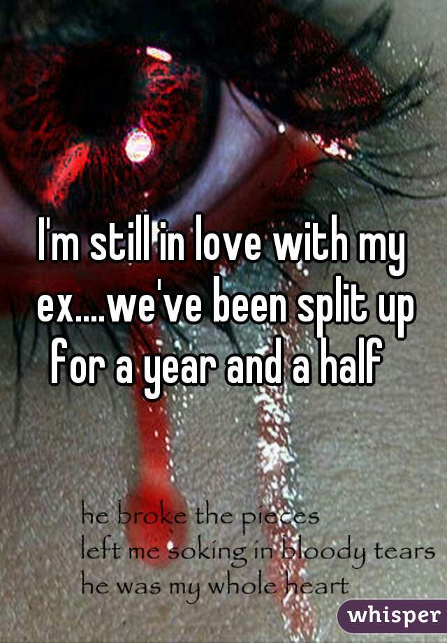 I'm still in love with my ex....we've been split up for a year and a half