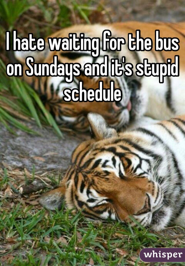 I hate waiting for the bus on Sundays and it's stupid schedule