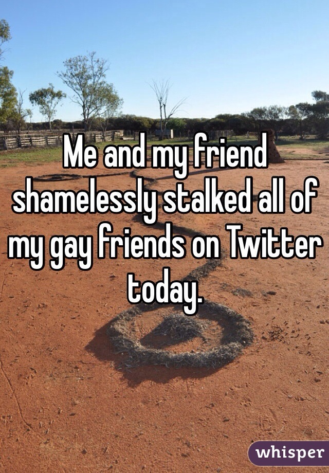 Me and my friend shamelessly stalked all of my gay friends on Twitter today.