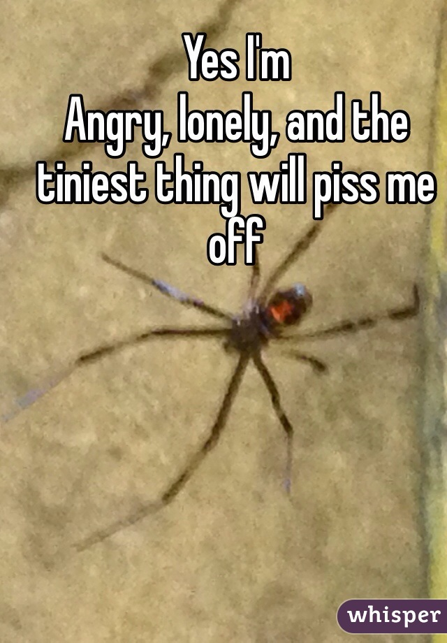 Yes I'm Angry, lonely, and the tiniest thing will piss me off