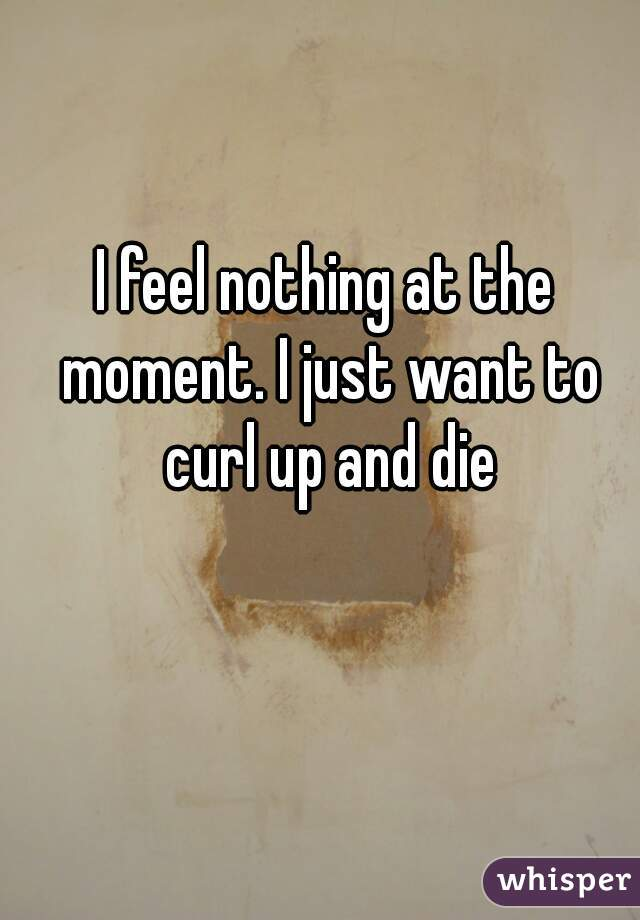 I feel nothing at the moment. I just want to curl up and die