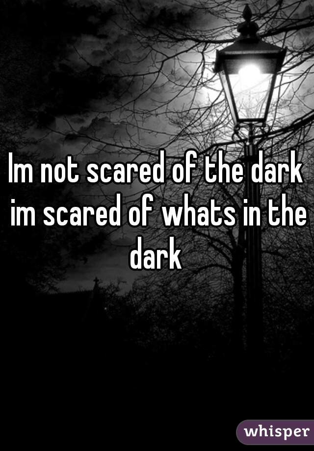 Im not scared of the dark im scared of whats in the dark